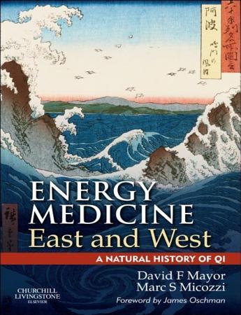 E Book Energy Medicine East and West PDF