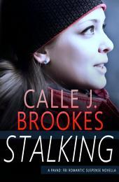 Stalking: A Christmas Novella