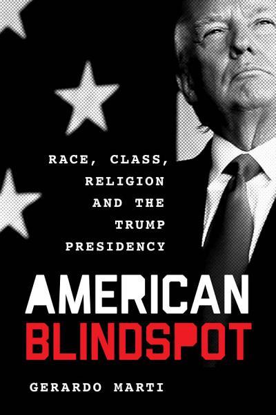 Download American Blindspot Book