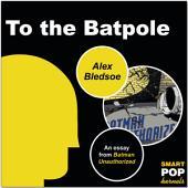 To the Batpole: An Essay/Parody on Batman