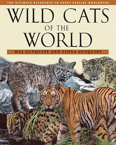 Cats Of The Wild