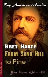 From Sand Hill to Pine: Top American Novelist