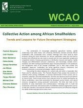 Collective Action among African Smallholders: Trends and Lessons for Future Development Strategies