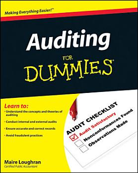 Auditing For Dummies PDF