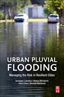 Urban Pluvial Flooding
