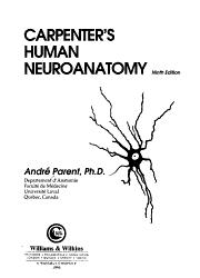 Carpenter s Human Neuroanatomy PDF