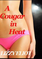 A Cougar in Heat