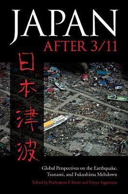 Japan after 3 11