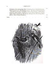 The Royal Natural History: Mammals, birds