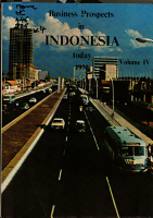 Business Prospects in Indonesia Today PDF
