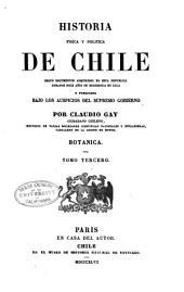 Historia fisica y politica de Chile segun documentos adquiridos en esta republica durante doce años de residencia en ella y publicada bajo los auspicios del supremo gobierno: Volumen 3