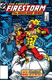 The Fury of Firestorm (1982-) #39