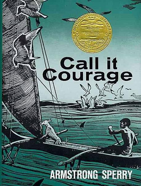 Download Call It Courage Book