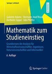 Mathematik zum Studieneinstieg: Grundwissen der Analysis für Wirtschaftswissenschaftler, Ingenieure, Naturwissenschaftler und Informatiker, Ausgabe 6