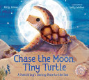 Chase the Moon  Tiny Turtle PDF