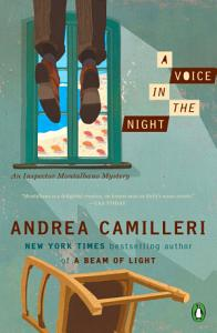 A Voice in the Night Book