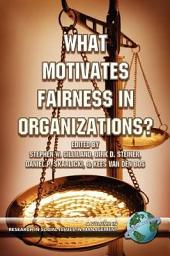 What Motivates Fairness in Organizations?