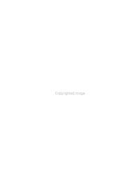 La dame de bronze et le monsieur de cristal PDF