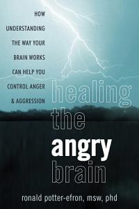 Healing the Angry Brain Book