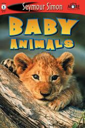 Baby Animals: See More Readers Level 1