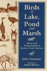 Birds of Lake, Pond, and Marsh