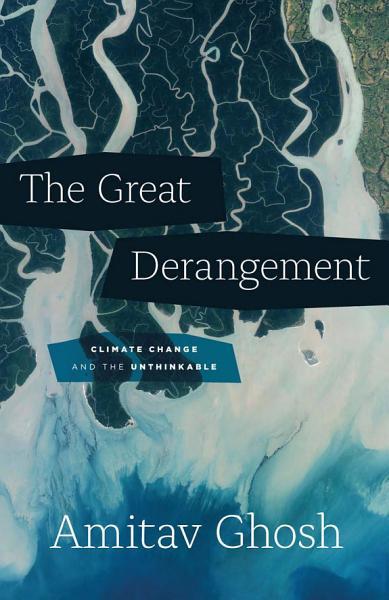 Download The Great Derangement Book