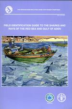 Field Identification Guide to the Sharks and Rays of the Red Sea and Gulf of Aden
