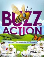 Buzz Into Action PDF
