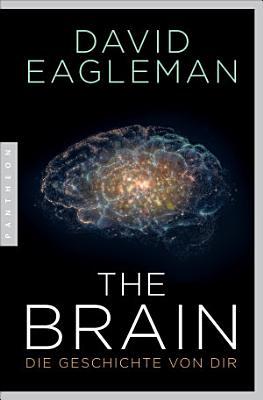 The Brain PDF