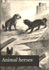 Animal Heroes: Being the Histories of a Cat, a Dog, a Pigeon, a Lynx, Two Wolves & a Reindeer and in Elucidation of the Same Over 200 Drawings