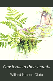 Our Ferns in Their Haunts: A Guide to All the Native Species