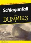 Schlaganfall f  r Dummies PDF