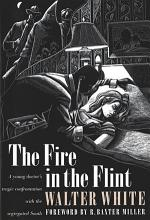 The Fire in the Flint PDF