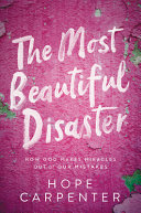 The Most Beautiful Disaster Book PDF