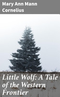 Little Wolf  A Tale of the Western Frontier PDF