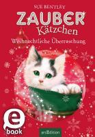 Zauberk  tzchen   Weihnachtliche   berraschung PDF