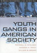 Youth Gangs in American Society PDF
