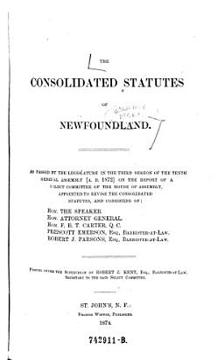 The consolidated Statutes of Newfoundland   etc   PDF
