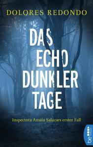 Das Echo dunkler Tage PDF