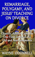 Remarriage  Polygamy  and Jesus    Teaching on Divorce PDF