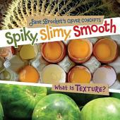 Spiky, Slimy, Smooth: What Is Texture?