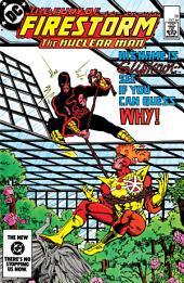 The Fury of Firestorm (1982-) #28