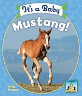 It's a Baby Mustang