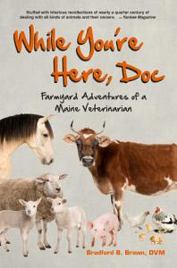 While You re Here  Doc  Farmyard Adventures of a Maine Veterinarian Book
