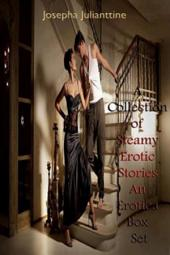 A Collection of Steamy Erotic Stories An Erotica Box Set
