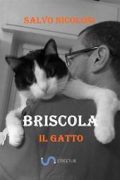Briscola il Gatto