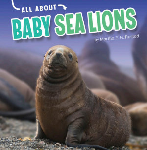 All about Baby Sea Lions PDF