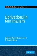 Derivations in Minimalism