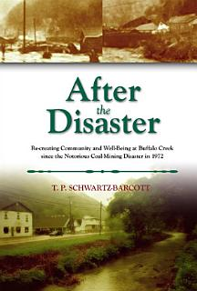 After the Disaster Book