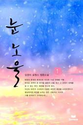 눈노을(전2권,완)